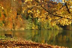 Paesaggio di autunno del lago Lucelle con un banco un giorno soleggiato Immagine Stock
