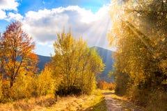 Paesaggio di autunno della campagna con luce solare ed i raggi di sole Immagine Stock