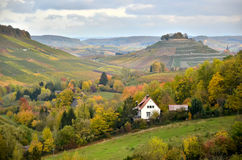 Paesaggio di autunno della Germania con la vista sulle colline della vigna Fotografie Stock