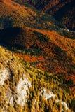 Paesaggio di autunno della montagna Fotografia Stock