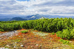 Paesaggio di autunno della montagna Fotografia Stock Libera da Diritti