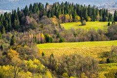 Paesaggio di autunno della regione selvaggia Immagini Stock