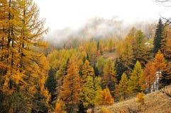 Paesaggio 1 di autunno delle alpi Immagini Stock Libere da Diritti