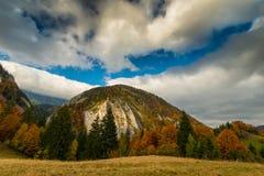 Paesaggio di autunno di ottobre nella zona di montagna a distanza nella Transilvania Fotografie Stock Libere da Diritti