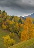 Paesaggio di autunno di ottobre nella zona di montagna a distanza nella Transilvania Fotografia Stock Libera da Diritti