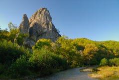 Paesaggio di autunno di Taiga. Fotografie Stock