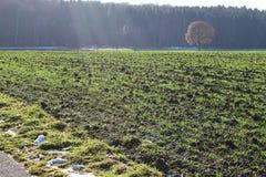 Paesaggio di autunno in Germania del sud Fotografia Stock