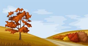Paesaggio di autunno. Illustrazione di vettore. Fotografie Stock