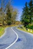 Paesaggio di autunno, la strada che conduce nelle montagne, moun blu Immagini Stock