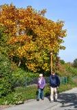 Paesaggio di autunno di Lucerna, Svizzera immagine stock