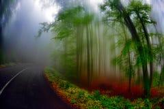Paesaggio di autunno nella foresta Fotografia Stock Libera da Diritti
