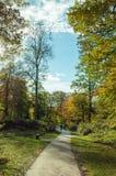 Paesaggio di autunno nella foresta di decano, Gloucestershire, Inghilterra Fotografia Stock
