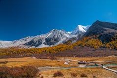 Paesaggio di autunno nella riserva naturale di Yading immagine stock