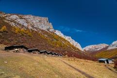 Paesaggio di autunno nella riserva naturale di Yading fotografia stock