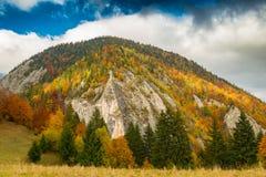 Paesaggio di autunno nella zona di montagna a distanza nella Transilvania Fotografia Stock Libera da Diritti
