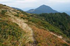 Paesaggio di autunno nelle montagne Fotografia Stock Libera da Diritti