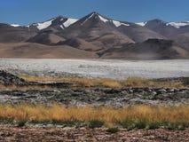 Paesaggio di autunno nelle montagne: all'erba pendente gialla alta anteriore, bande bianche di terra salata, dietro il pe dell'al Immagini Stock
