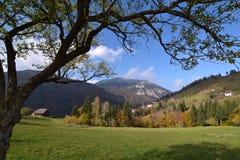 Paesaggio di autunno in Romania Fotografia Stock