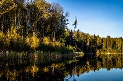 Paesaggio di autunno su un lago in Russia centrale Fotografia Stock