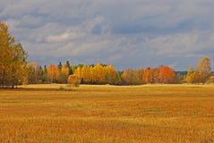 Paesaggio di autunno in Svezia Fotografia Stock