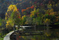 Paesaggio di autunno in una sosta Fotografia Stock Libera da Diritti