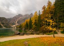 Paesaggio di caduta del lago Braies, alpi della dolomia, Italia Immagine Stock