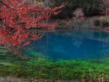 Paesaggio di caduta nel lago Blautopf Fotografia Stock