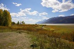 Paesaggio di caduta in Tetons immagini stock libere da diritti