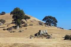 Paesaggio di California del Nord Immagini Stock Libere da Diritti