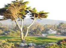 Paesaggio di Carmel in California Fotografie Stock Libere da Diritti