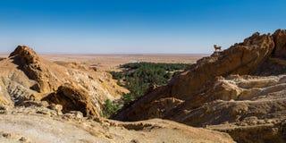 Paesaggio di Chebika Fotografie Stock
