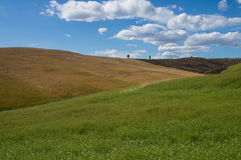 Paesaggio di Chiant, Toscano Fotografia Stock Libera da Diritti