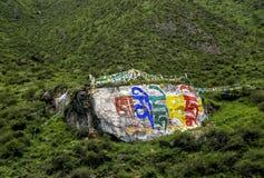 Paesaggio di cinese della contea del Tibet Medog Immagine Stock
