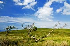 Paesaggio di Conamara fotografie stock libere da diritti