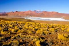 Paesaggio di Cordigliera de Lipez con le alte montagne e Laguna Morejon, Altiplano andino, Bolivia Fotografia Stock