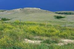 paesaggio di coulee del camino Fotografie Stock Libere da Diritti