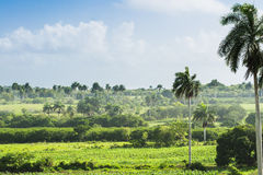 Paesaggio di Cuba nella campagna vicino a Varadero Fotografia Stock Libera da Diritti