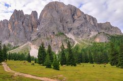 Paesaggio di Dolomiti Fotografie Stock Libere da Diritti