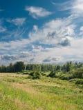 Paesaggio di estate. Fotografia Stock