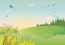 Paesaggi di estate stock vettoriali ed illustrazioni
