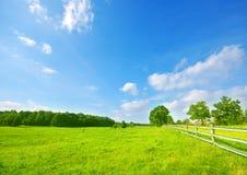 Paesaggio di estate Fotografia Stock Libera da Diritti