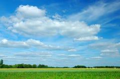 Paesaggio di estate fotografie stock libere da diritti