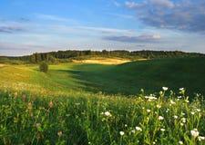 Paesaggio di estate Immagini Stock Libere da Diritti