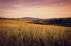 Paesaggio di estate ad anche con le colline della montagna immagine stock libera da diritti