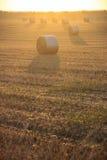 Paesaggio di ESTATE Alta Murgia Nationa Park: alba con le balle di fieno - (Puglia) l'ITALIA Immagine Stock