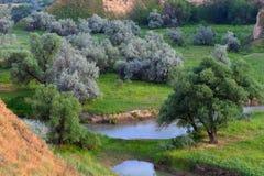 Paesaggio di estate, Burunday, Almaty, il Kazakistan Fotografie Stock Libere da Diritti