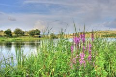 Paesaggio di estate in campagna bulgara Fotografie Stock