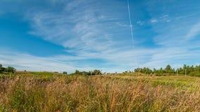 Paesaggio di ESTATE Campo collinoso con erba asciutta nella priorità alta sotto un cielo blu Fotografie Stock