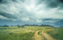 Paesaggio di estate con erba, la strada e le nuvole Immagini Stock Libere da Diritti