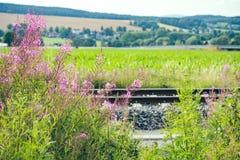 Paesaggio di estate con il binario ferroviario Fotografia Stock